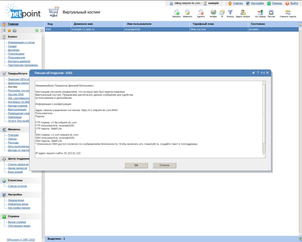 Окно с информацией по хостингу Netpoint