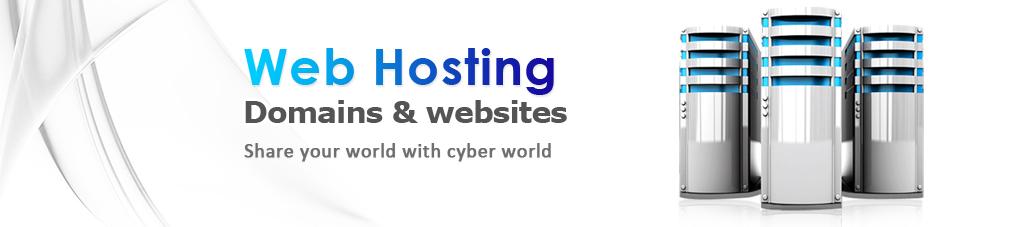 Web hosting Netpoint