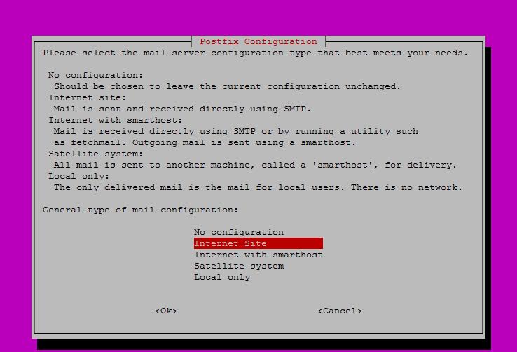Выбор параметра во время установки postfix